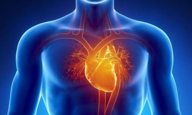 Y cardíaco vascular resistencia ataque
